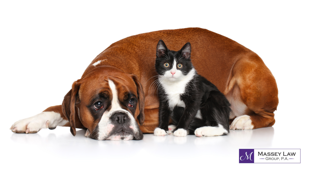 Dog and cat estate planning for pets